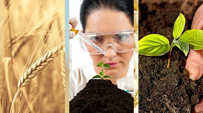Organic Soil Amendments Seminar
